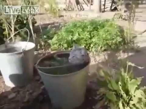 VIDEO: Osav viis kuidas leida oma isiklik rahu