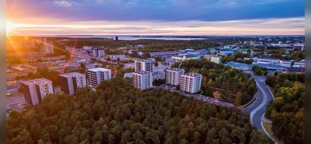 ФОТО │ В Таллинне построят новый жилой район на 300 квартир