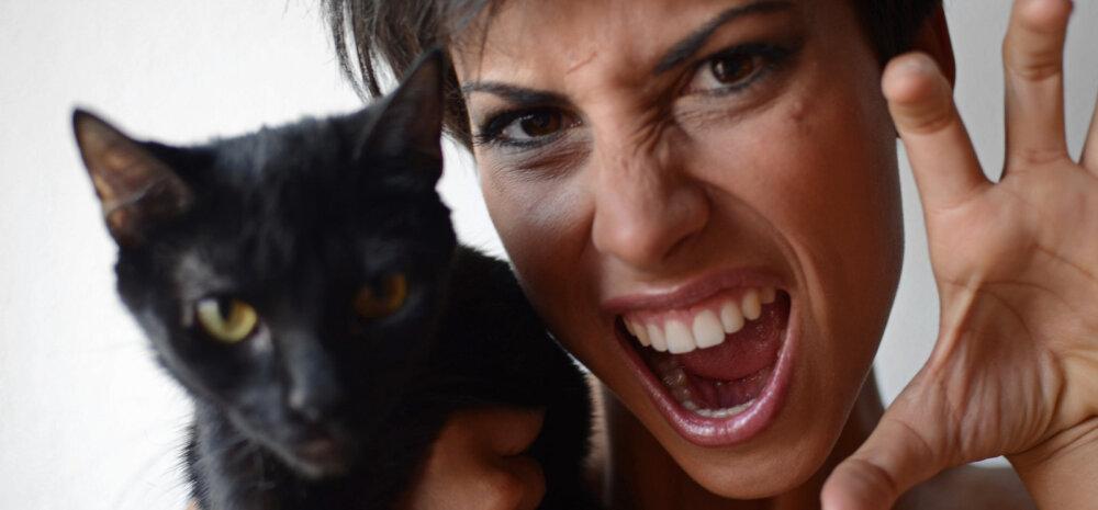 Kaheksa humoorikat põhjust, miks naised on kassid