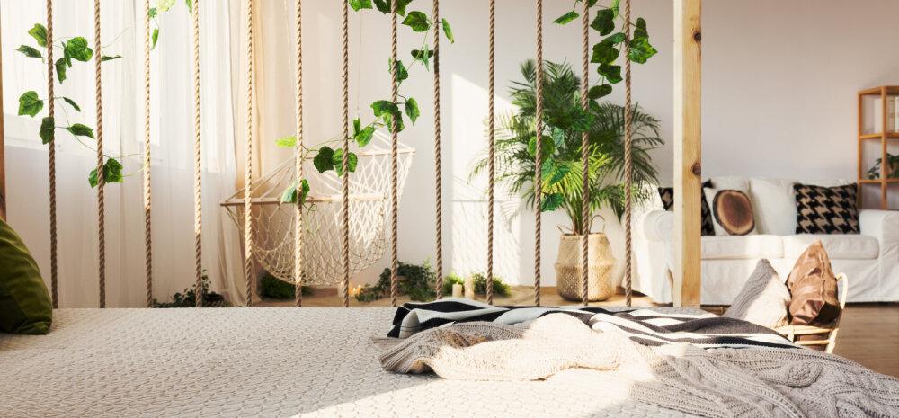 Viis geniaalset võimalust, kuidas ruumi vaheseinte, mööbli ja värvidega osavalt liigendada