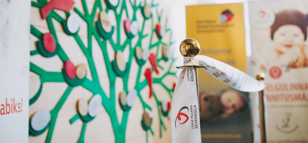 Just sellise puu taustal saavad nüüd Pelgulinna Sünnitusmajas beebi ilmale toonud noored pered koos pesamunaga pilti teha