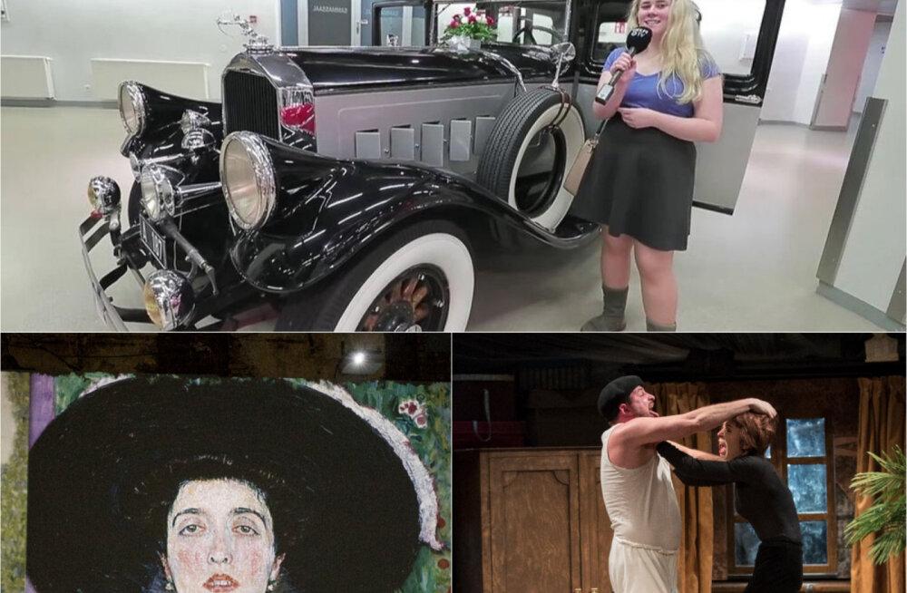 Выставки, спектакли и даже цирк! Культурная подборка Бублика за год