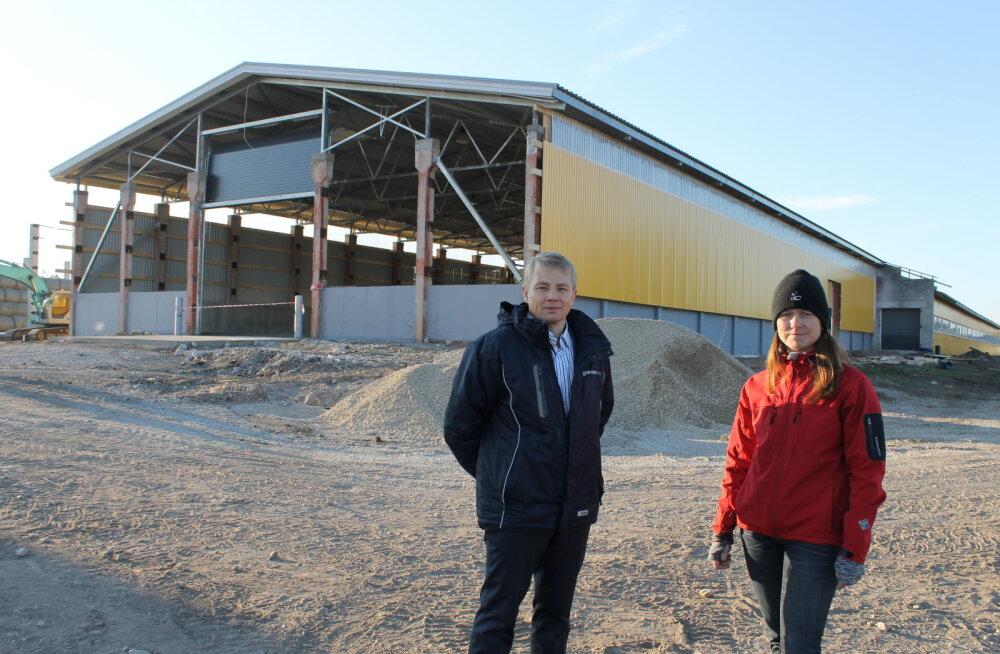Kehrasse tuleb Eesti suurim põllumajandusloomade kogumiskeskus