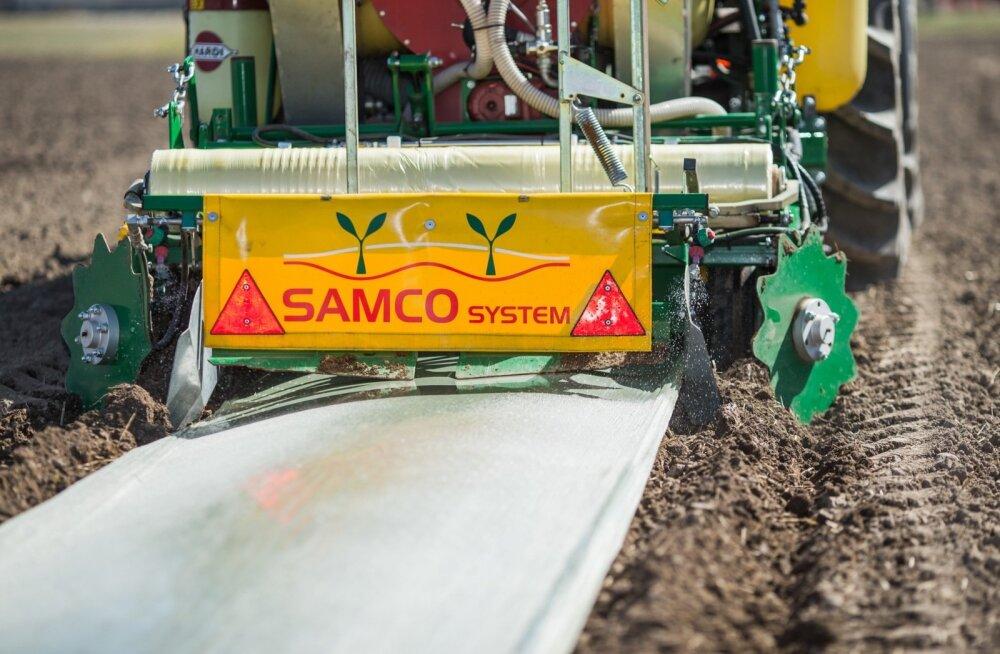 Nii see sojaoa külv kile alla Samco tehnoloogiaga Jõgeva katsepõldudel kevadel käis.