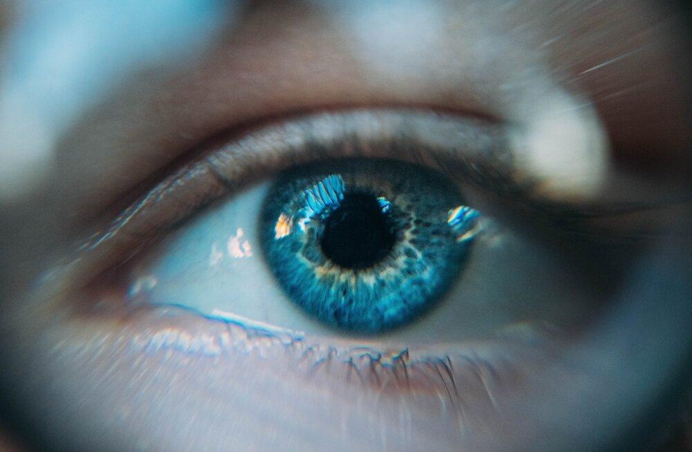 10 olulist ainet, mis toetavad silmade tervist