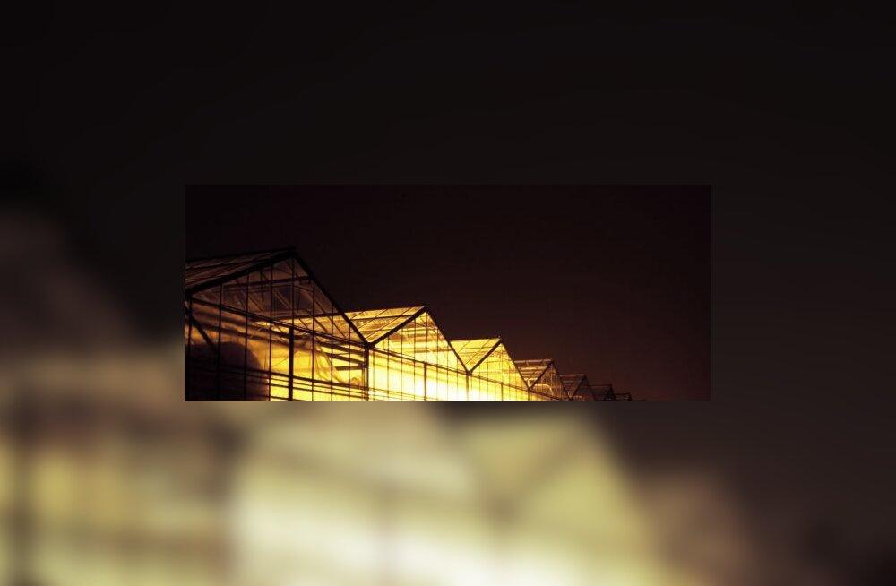 Arhitektuurifotokonkursi tulemused selgunud