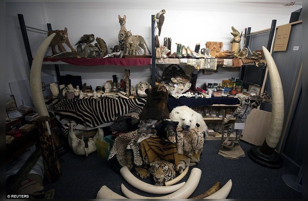 Аэропорт Хитроу показал коллекцию незаконных вещей, изъятых у пассажиров в 2017 году