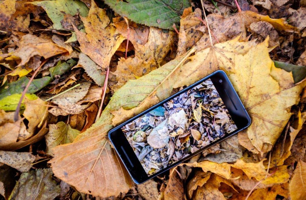 Pixel 2 ei ole mõeldud igamehe telefoniks, vaid eeskujuks teistele tootjatele.