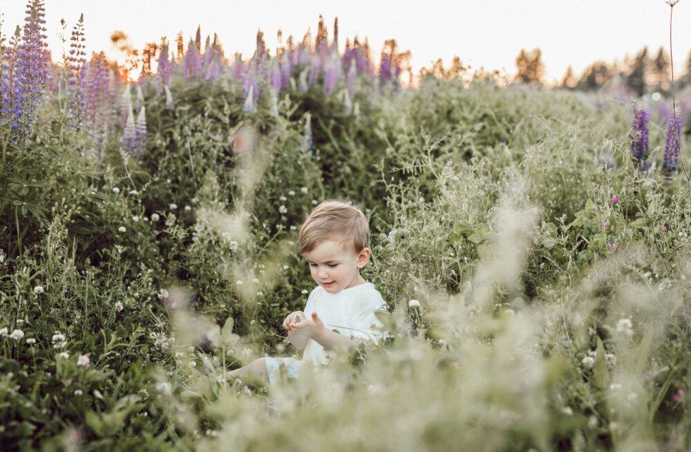 Last saab kasvatada ka prügimäeta: 12 lihtsat moodust olla keskkonnateadlikum lapsevanem