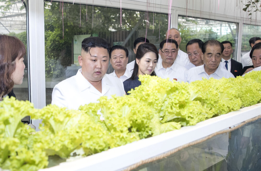 Kim kinnitas tänavu juba kolmandal Hiina-reisil Xi Jinpingile sõprust ja lubas, et nüüd on põhifookus majandusel