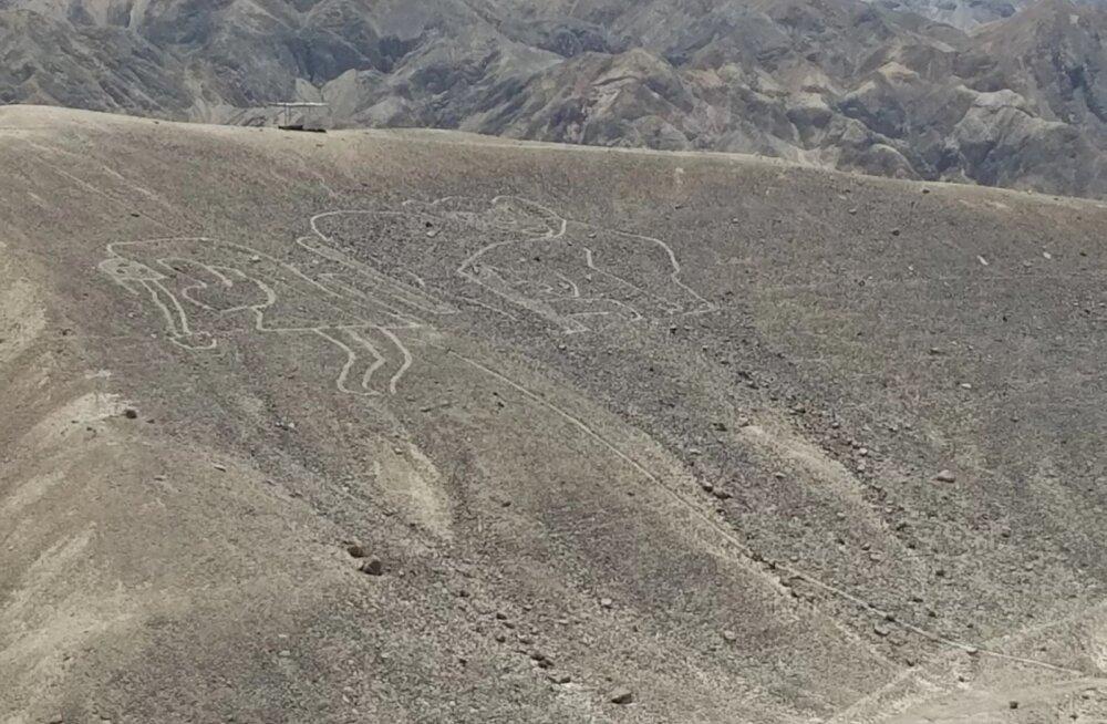 VIDEO | Arheoloogid avastasid droonilennul uued iidsed Nazca joonistused