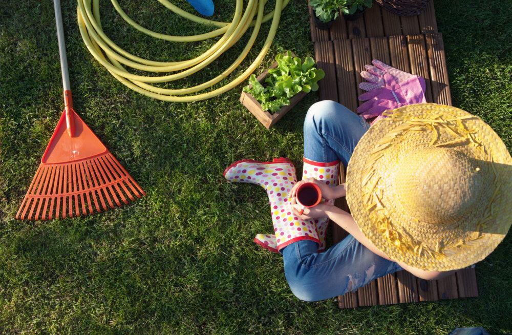 8 nippi mugavalt aednikult
