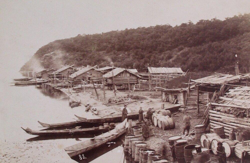 """Eesti randlastest maakuulajad vaatasid üle umbes 300 versta pikkuse rannaala. Ussuuri lahest kuni Breobraženski laheni leiti uueks koduks sobilikud kohad 200–240 kaluriperekonnale. Esialgu elasid neis paikades küll veel """"kollase rassi esindajad""""."""