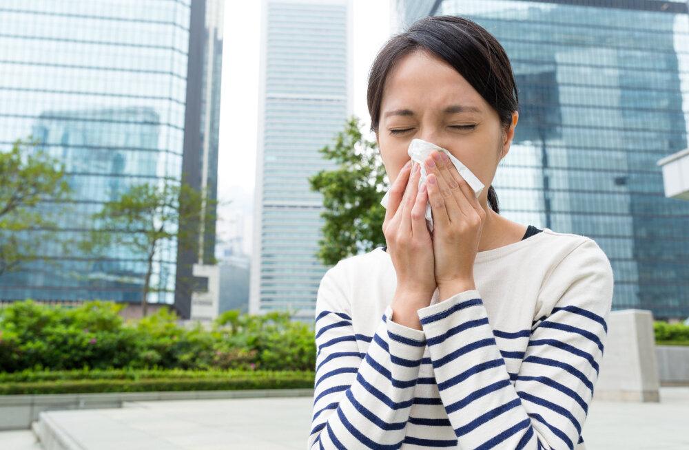 8 фраз, которые выведут из себя аллергика