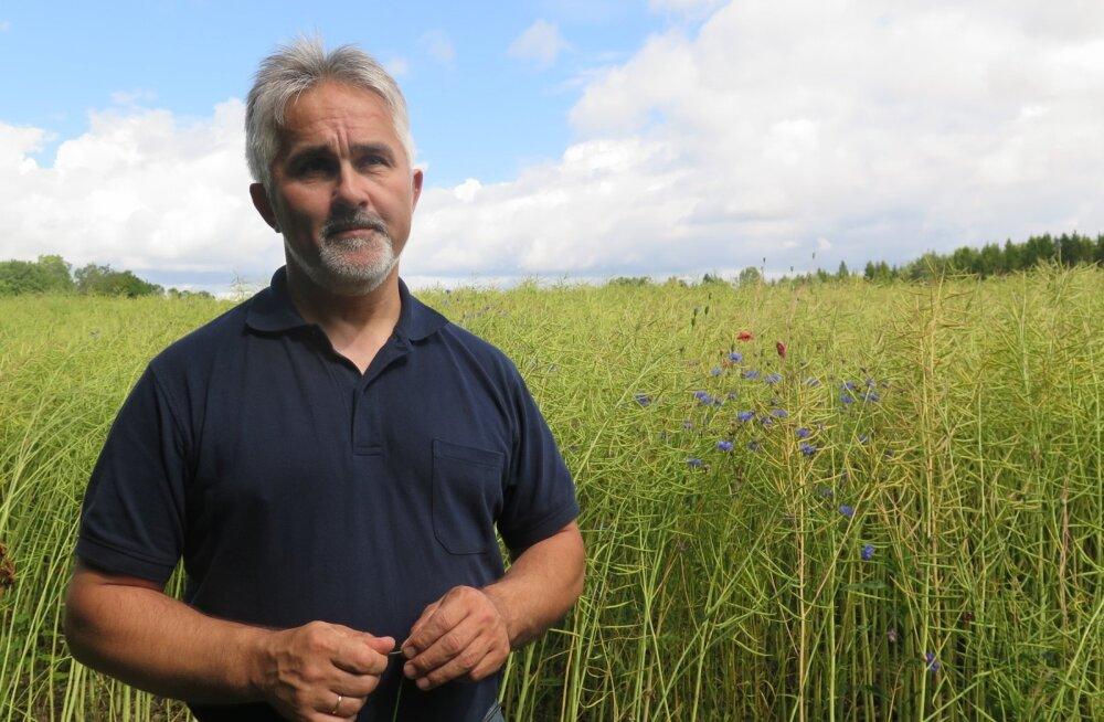 Võistlejate rivis on varemgi ilusaid rapsipõlde näidanud Saaremaa põllumees Tõnu Post.