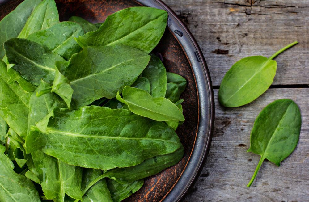 Hapuoblikas: värske ja krõmpsuv kevadine c-vitamiini allikas, mis peletab kiirelt stressi ja soodustab seedimist