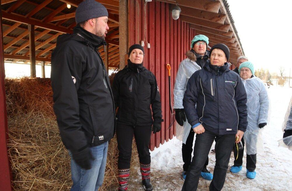 Helme Lihaveise OÜ omanikud Tiina ja Ivo Tomson.