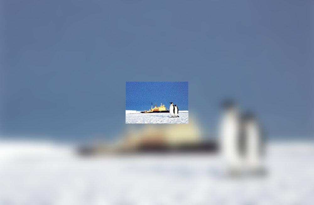Antarktika jaama soovijad: Ansip ei saanud meist aru
