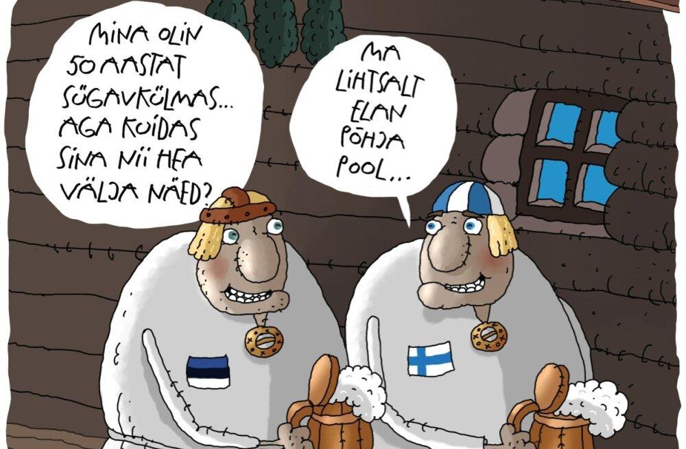 Karikatuur | Sajandivanused mehepojad soome saunas