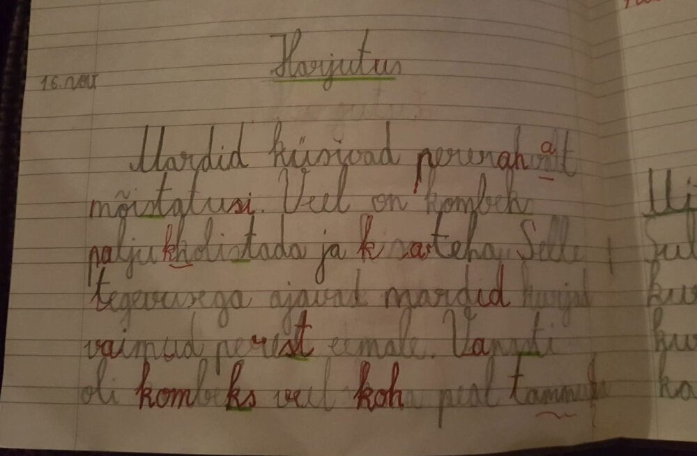 Laste stress kirjatehnikast. Püüdlikkusest hoolimata on hinne kaks