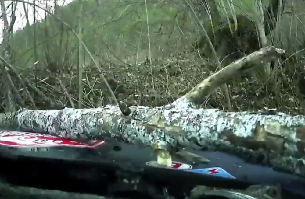 VIDEO | Soomlane kihutas Monte Carlo rallil vastu puud