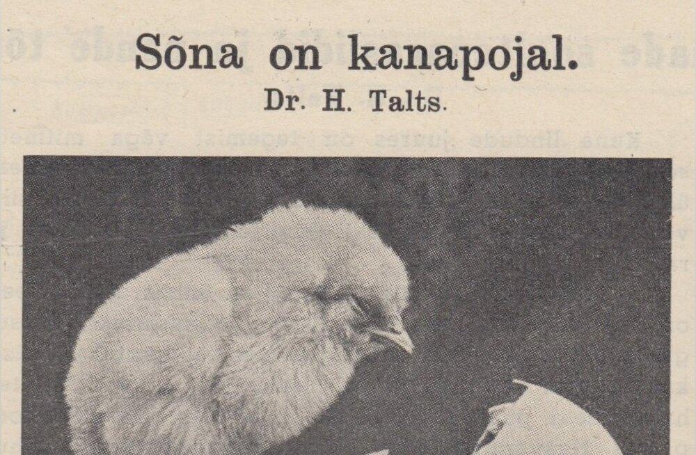 Lugege, munatöösturid! Juba 1939. aastal teati, et kana peab kasvama puhtal põrandal, värske õhu ja otsese päikese käes