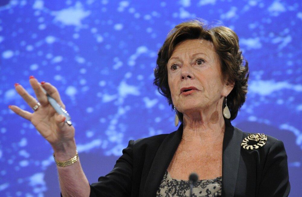 Kõige silmatorkavam isik, kes andmebaasist kohe ette jäi, oli EL-i endine konkurentsivolinik Neelie Kroes.
