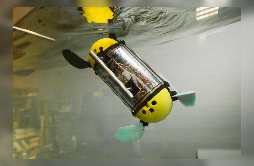 TTÜ teadlased loovad allveearheoloogidele osavat robotkilpkonna