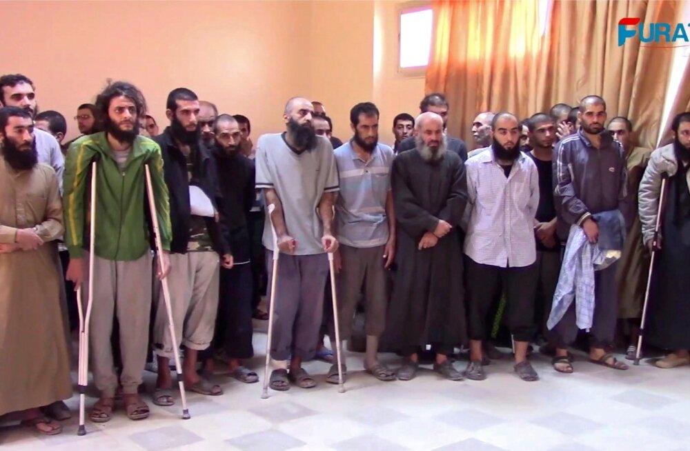 Videokaadril on alla andnud ISIS-e liikmed Süüria vägede baasis Raqqas, osa vigastatud, teised kõbusamad. Jäädvustus on tehtud oktoobris ja selle avalikustas Süüria kurdi aktivistide meediakanal Furat FM.