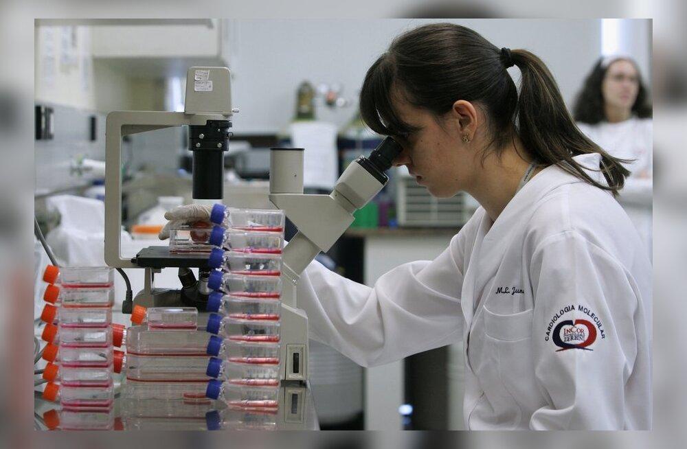 Euroopa Toiduohutusamet tunnistas Eesti teadlaste piimhappebakterit