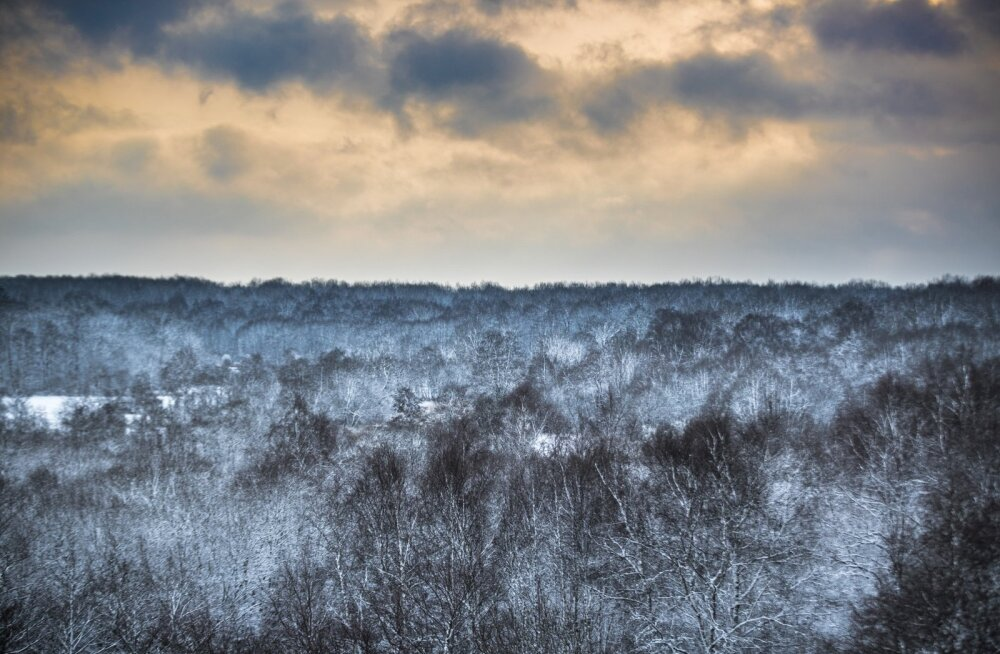 Nädala prognoos: nädalavahetuseks talv tagasi