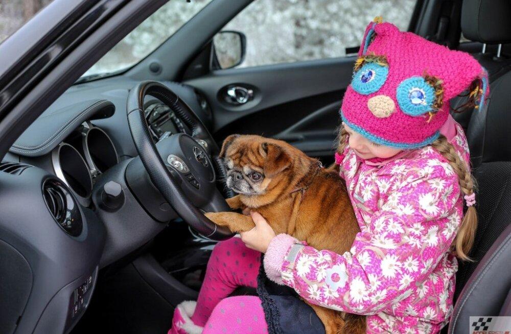 Autotervise ABC: autos sõitnud koer või kass ohustab allergikut ka aastaid hiljem