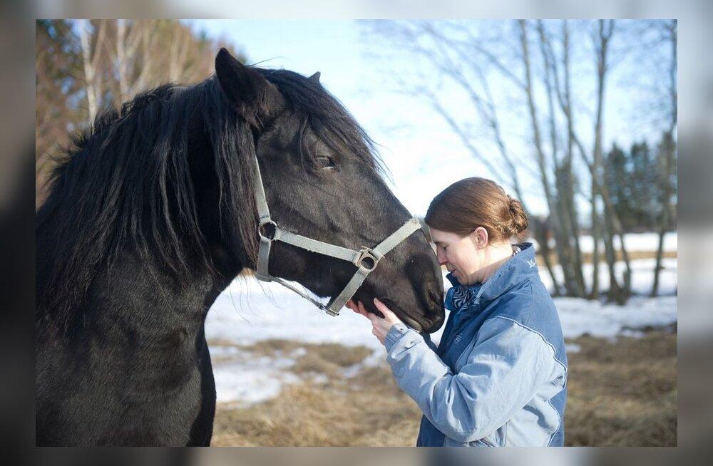 TÄISMAHUS: Jõuline, ent sõbralik vana-tori hobu paelub Helsingi ratsapolitseid