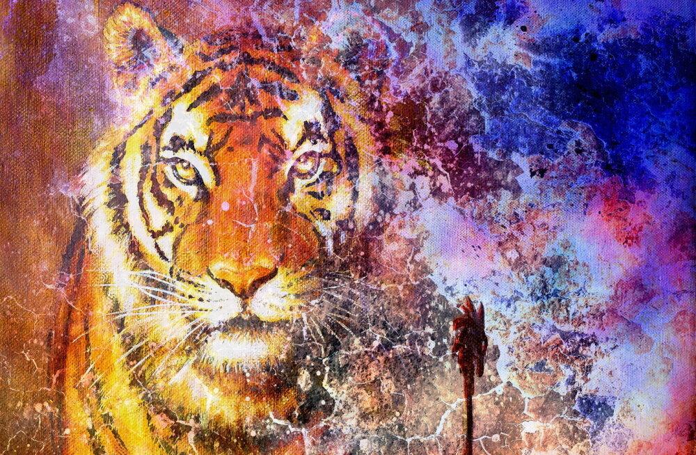Unenägude seletamine: mida tähendab sinu unes nähtud loom?