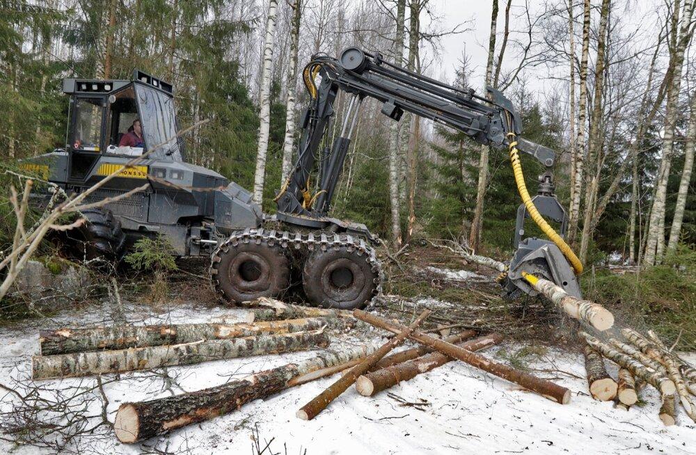 Metsa raieõiguse või metsamaterjali müügilt võiks ilma kuludokumente esitamata maha arvata arvestuslikud kulud.