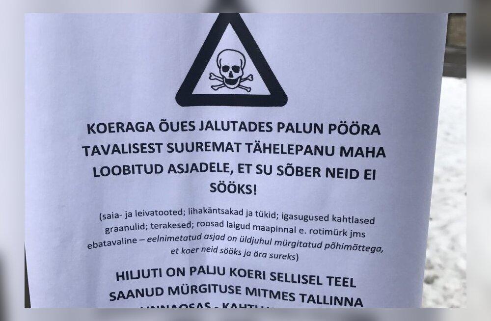 В нескольких частях Таллинна отмечены случаи отравления собак разбросанной на улице едой с ядом