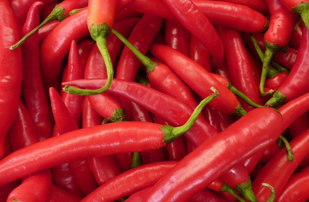 Tšilliga surmale vastu: teravad toidud parandavad tervist