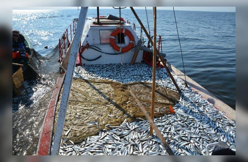 Kalaettevõtted saavad uutele turgudele minemiseks toetust