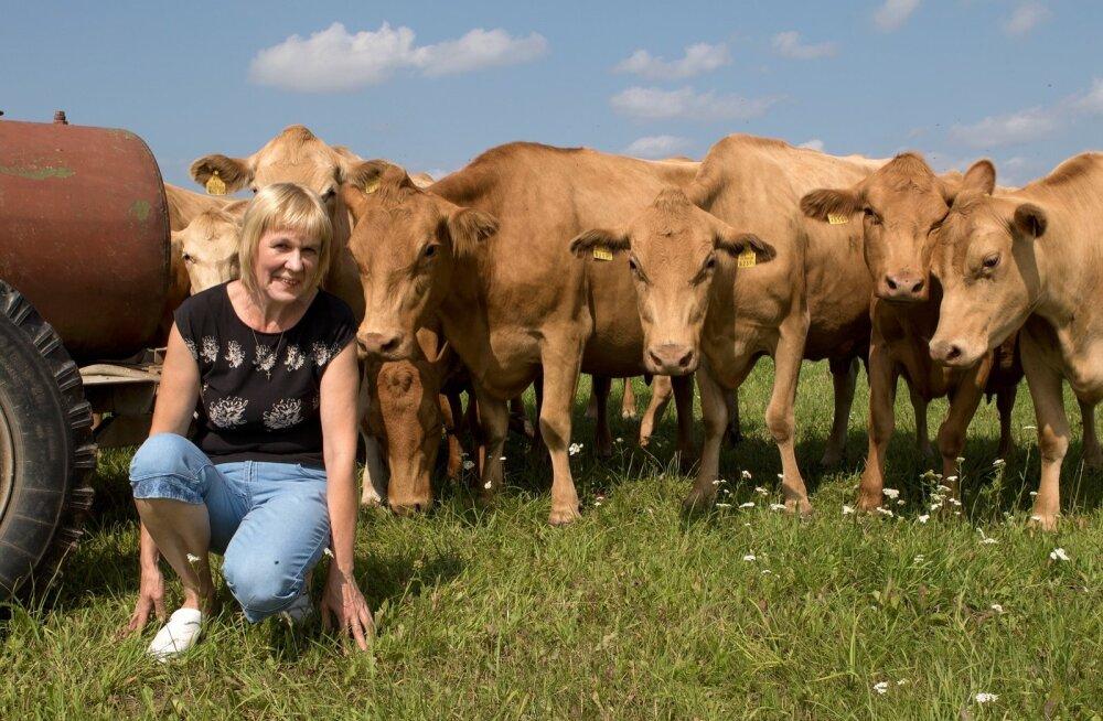 Reet Loorits, Pahkla Camphilli küla Farmi OÜ loomakasvatusjuht on ka tänavune parim maakarjakasvataja.