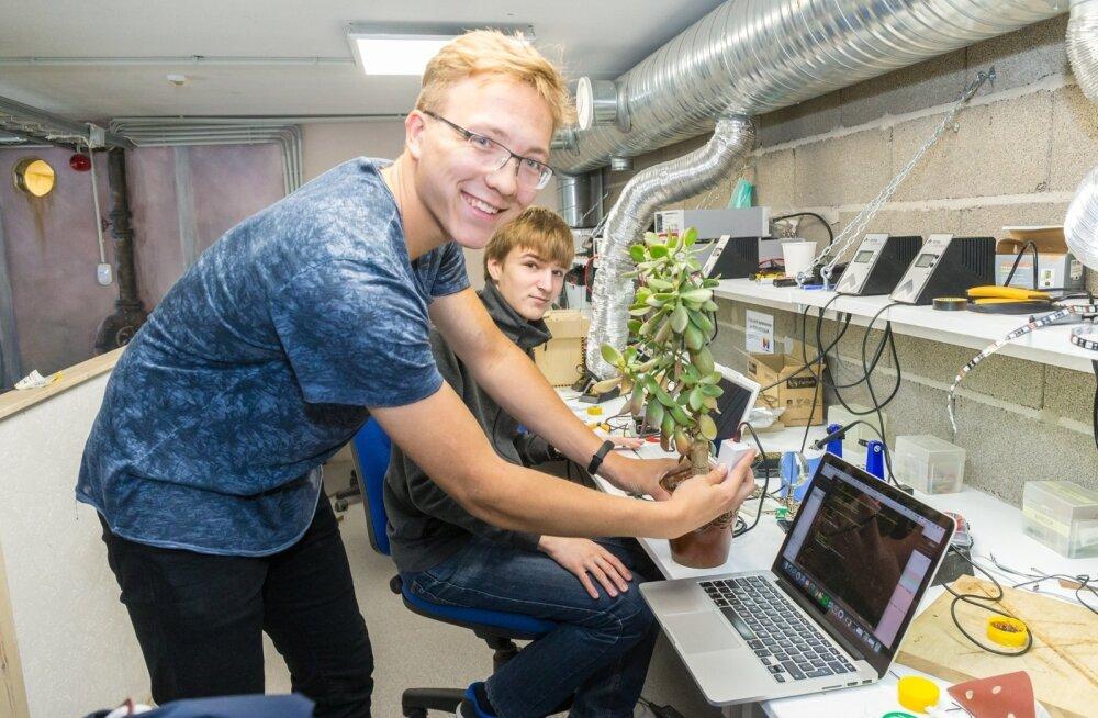 Huminote'i meeskonnaliikmed rakendavad oma leiutises füüsikateadmisi – andur peaks märku andma, kui taim vett vajab.