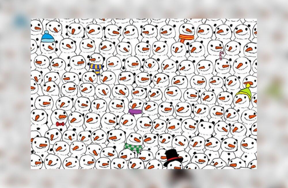 PILTMÕISTATUS: Pane end proovile ja vaata, kas suudad kõigi lumememmede seast panda üles leida?