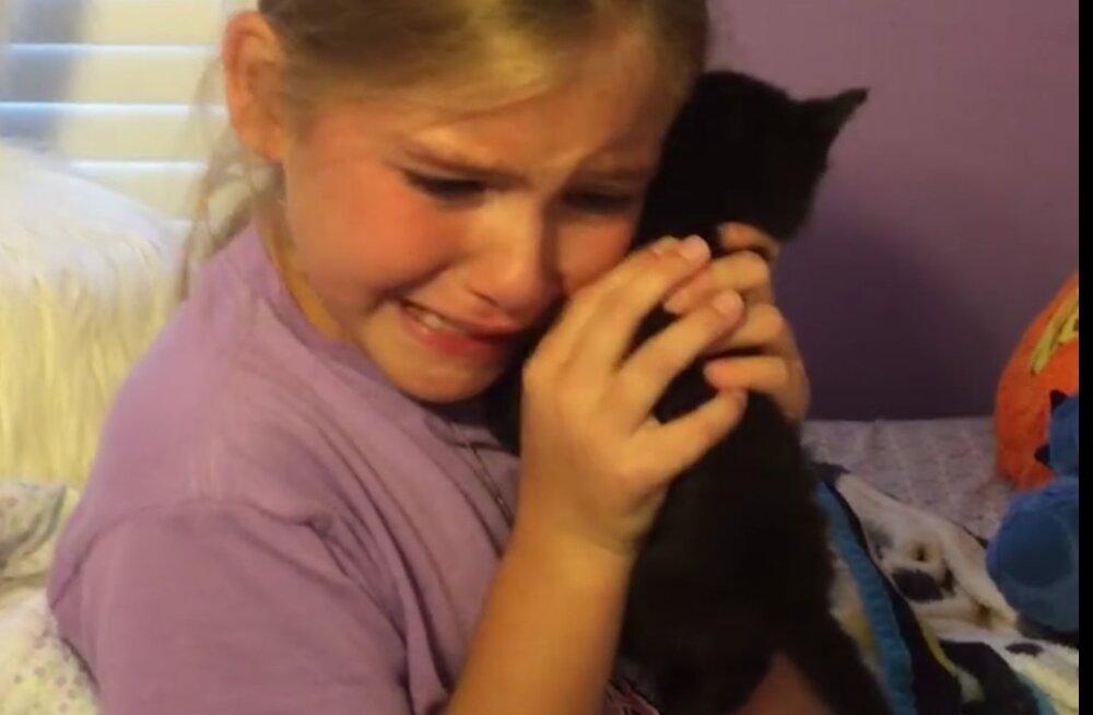 Video, mis toob rõõmupisara silma: vaata, kuidas reageerib väike tüdruk, kui ema talle uue kassi kingib