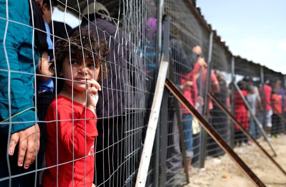 Sõdade ja konfliktide eest põgenenud inimesi on 300 000 võrra rohkem kui mullu.