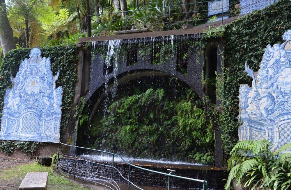 Madeira Maalehe reis