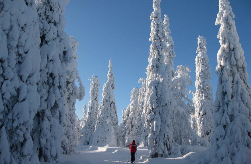 Финляндия: страна с неправильным названием