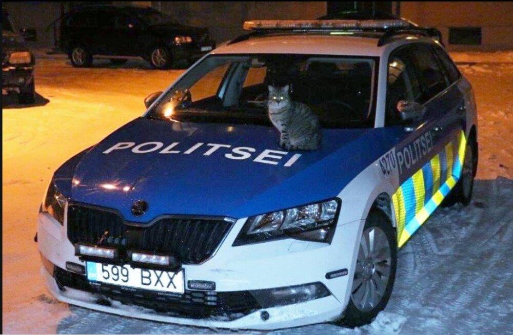 FOTO | Jõhvi politsei ridadesse on astunud vabatahtlik patrullkass