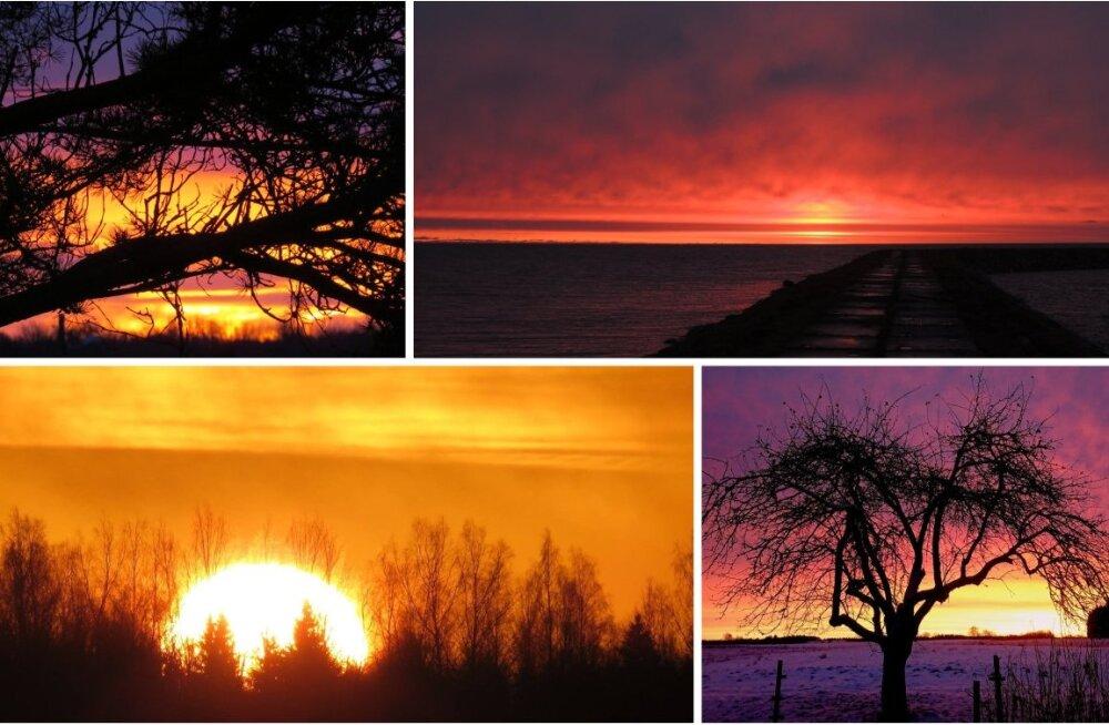ФОТО: Сегодня утром небо над Эстонией было необычайно красивым