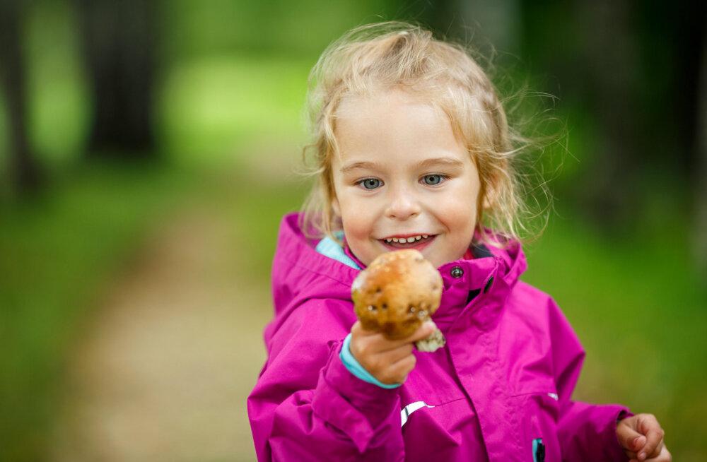 Грибы в детском меню: факты и мифы