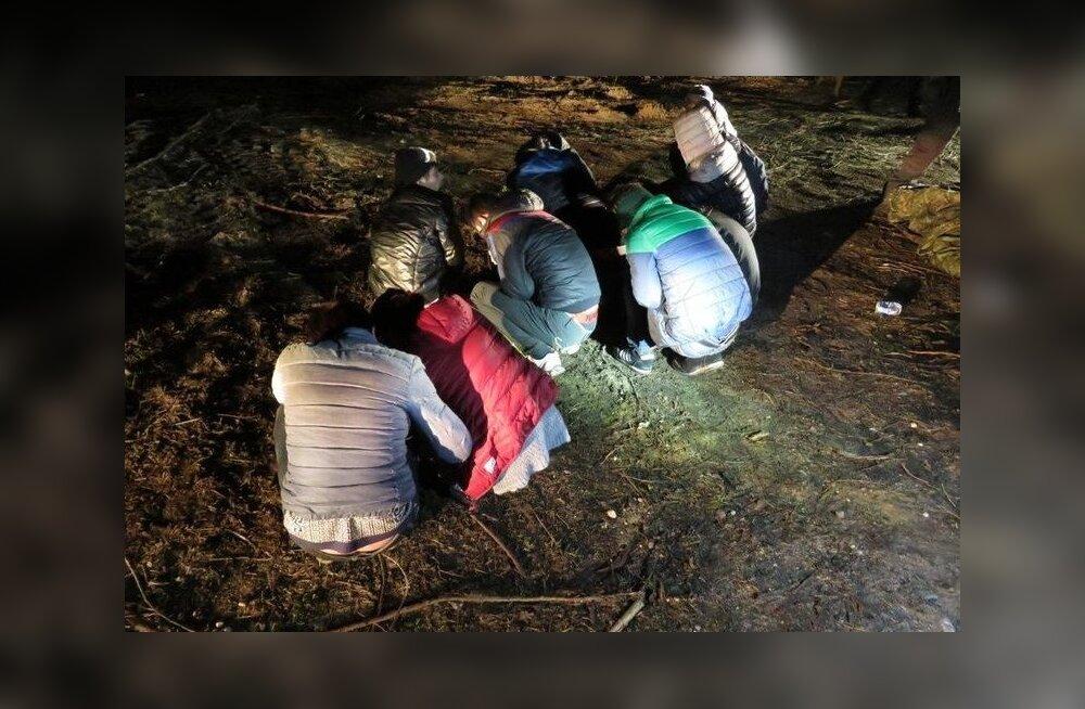 Kokku jõudis Igor Aleinikovi võrgustik Venemaalt üle piiri illegaalselt 51 inimest tuua, enne kui mullu aprillis vahele jäi.