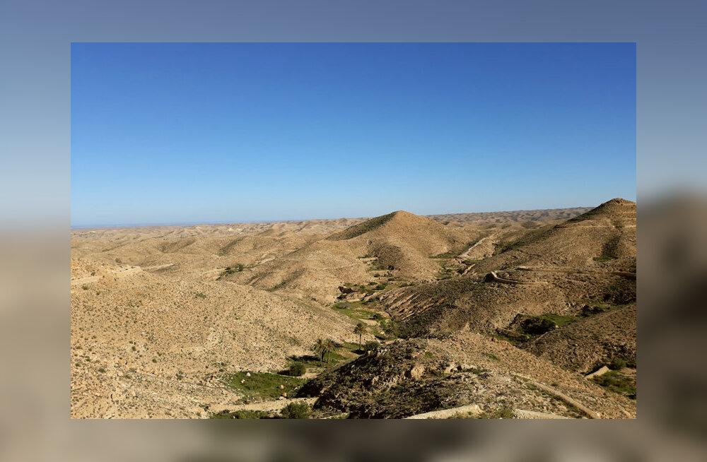 TUNEESIA aastavahetusseiklused | Punnis hõlmadega salaveini laost välja ehk Vahemere sinisest Sahara kuldseni